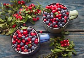 frutos maduros da floresta - cranberries e mirtilos foto