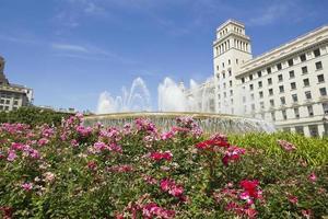 flores na Praça da Catalunha. Barcelona, Espanha. foto