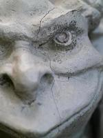 retrato parcial de gárgula foto