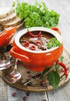 sopa de pimenta com feijão e verduras foto