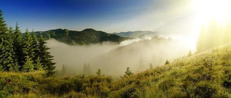paisagem de manhã nevoenta foto