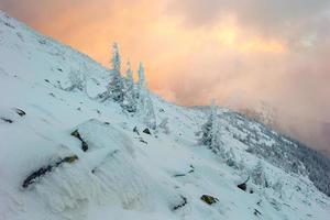 Cárpatos de inverno foto