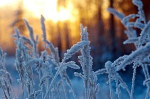 cena de inverno