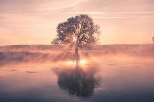 manhã de inverno colorido foto