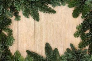 fronteira de vegetação de inverno foto