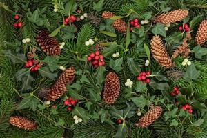 fauna e flora de inverno foto