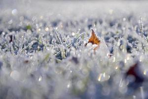 magia do inverno foto