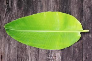 folha de banana foto