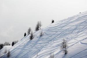 traços de esqui na neve foto