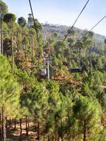 teleféricos sobre a floresta foto