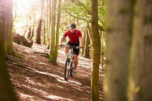 homem andando de bicicleta de montanha pela floresta foto