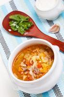 sopa de repolho tradicional russo - shchi foto