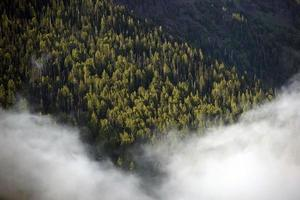 montanhas nevoentas de washington