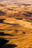 rolling hills palouse região leste washington estado terras agrícolas foto