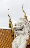 leão gêmeo em wat benchamabophit, bangkok, tailândia