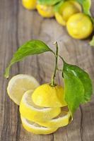 limão fatiado foto