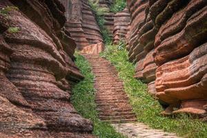 floresta de pedra vermelha foto