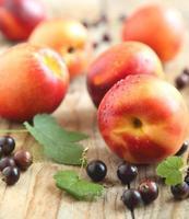 nectarinas frescas e corrente preta foto