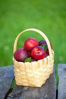 cesta com nectarinas foto