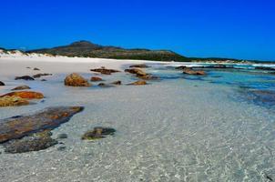 praia selvagem foto