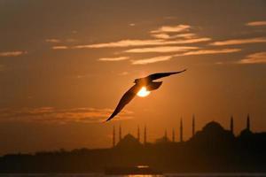silhueta de istambul foto