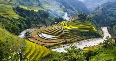 campos de arroz em socalcos foto