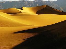 dunas de areia foto