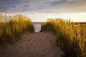 em uma praia de areia no departamento morbihan, bretanha foto