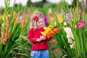 criança colhendo flores frescas tipo gladíolo foto
