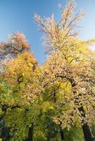 Milão (Itália) no outono foto
