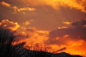 pôr do sol vibrante das laranjas foto