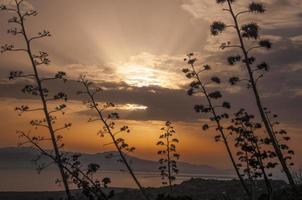 pôr do sol em cagliari foto
