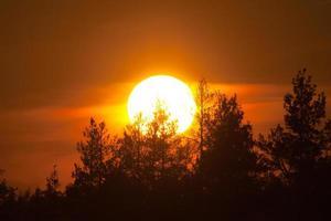 pôr do sol sobre madeira foto