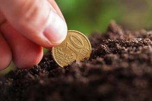 crescimento de dinheiro. foto