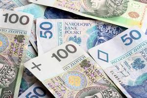 moeda polonesa em fundo branco foto