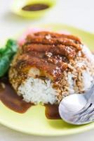 pato assado com molho de arroz foto