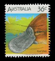 selo postal australiano foto