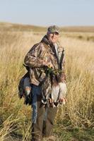 patos de caça foto