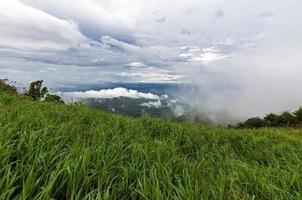 campo de plantação no pico na Tailândia