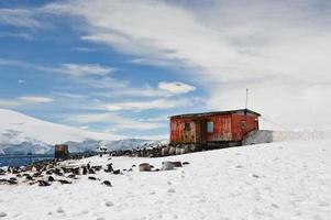 porto de mikklesen com cabana foto