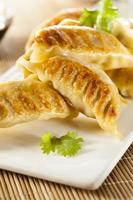 um prato de potstickers vegetarianos asiáticos caseiros foto
