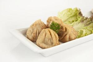wonton - wontons fritos orientais cheios de bolinho de massa chinês