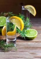 gin com limão foto