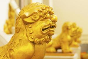 leão chinês no portão foto