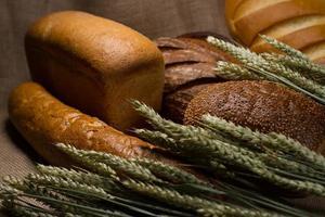 pão de diferentes tipos foto