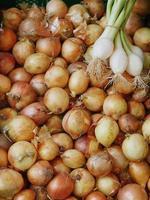 cebolas de mercado foto