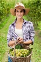 jovem mulher segurando uvas em um vinhedo foto
