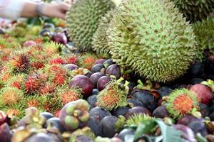 muitas frutas na mesa. foto