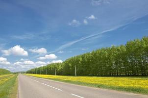 estrada rural. estrada no outono
