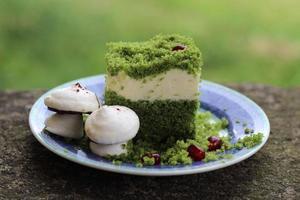 """bolo chamado """"vegetação rasteira"""" foto"""
